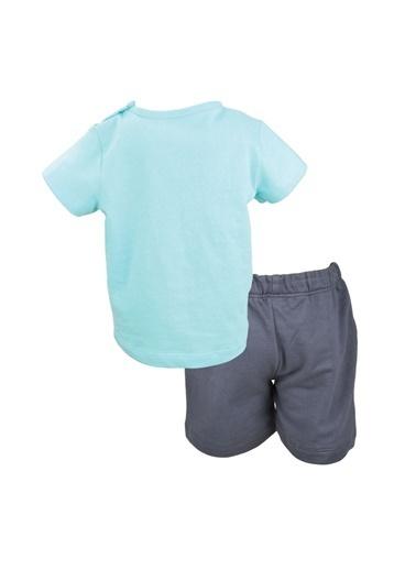 Mininio Antrasit Elephant T-Shirt ve şort Takım (3-24ay) Antrasit Elephant T-Shirt ve şort Takım (3-24ay) Antrasit